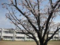 静岡県立西部特別支援学校
